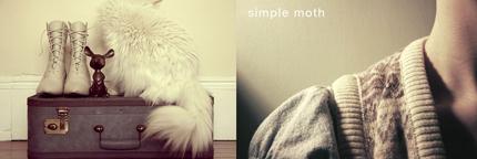 Simple moth 1